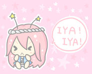 Iya Iya Seijin2
