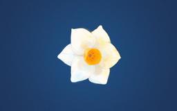 """Image of """"分裂症-a∈A- (Fēnlièzhèng-a∈A-)"""""""