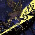 Hikari 10th Album.jpg