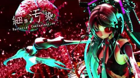 Bacterial Contamination - Kyo Zola Project Vocaloid