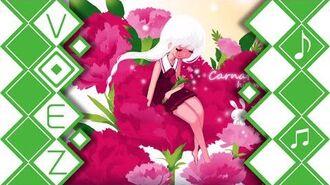 Carnation - himmel