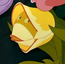 Tulip AIW