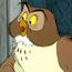 Owl TMAWP
