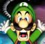 Luigi LM