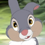 Thumper (young)