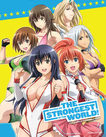 Wanna Be the Strongest in the World 2013 DVD Cover