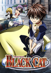 Black Cat DVD Cover