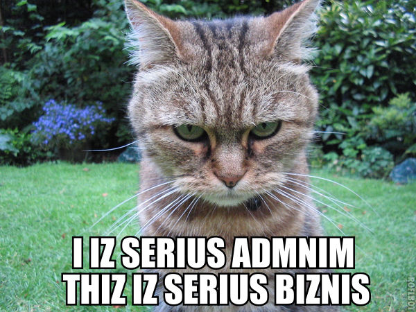 File:I IZ SERIUS ADMNIM THIZ IZ SERIUS BIZNIS lolcat.jpg
