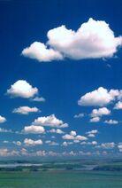 Cumulus de beau temps1