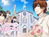 My Forged Wedding/Novel