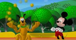 Mikijeva igralnica pluto