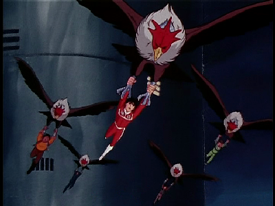 File:Screen-vulture hang gliding.png