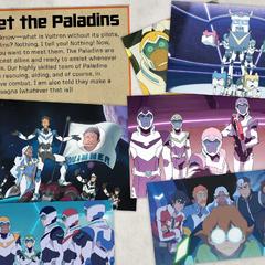 The Paladins.