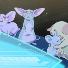 Distraught over the disappearance of Allura and the Paladins through a dimensional rift.