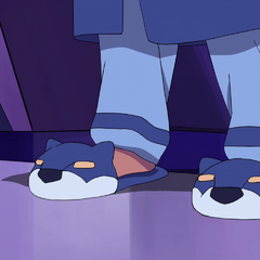 Lance's newly patented Fuzzy Voltron Slippers with laser mouth action! Get yours while supplies last!