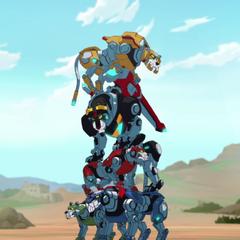Lion stacking 101. Lance: A. Pidge: B. Keith: A. Shiro: A. Hunk: F!