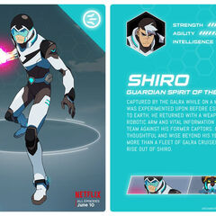 Shiro's Paladin Armor with Helmet