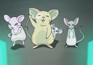 Mice First