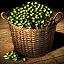 Olive - Icon (Big)