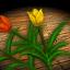 Tulip - Icon (Big)