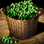 Vegetables - Icon (Big)