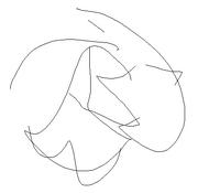 Psysebi scribble