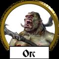 Orc name icon