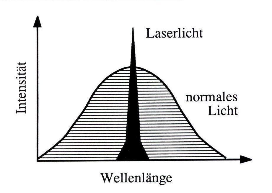 Niedlich Was Bedeutet überlegen Mittelwert In Der Anatomie Bilder ...