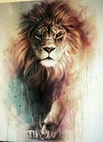 LionProfilePic