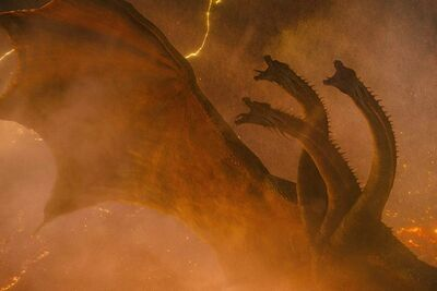 Godzilla-king-of-the-monsters-post-credits-scene-explained-king-ghidorah-head-gozilla-vs-kong