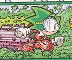Eco Sonic