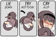 Salamander Homu Dealing with sadness meme pic