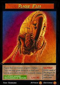 Plague Flea-1-