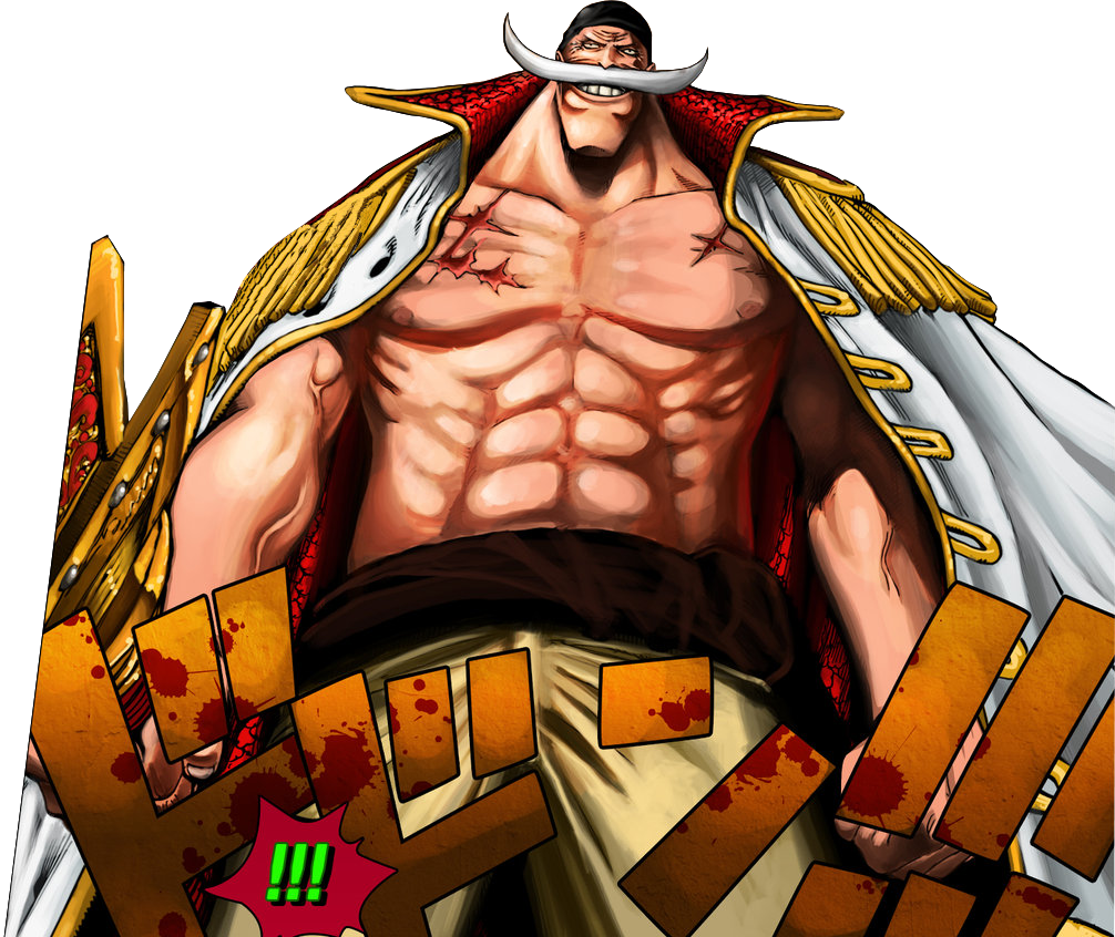 Whitebeard Desktop 1006x846 Hd Wallpaper 963317