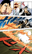 Isshin's Unamed Attack