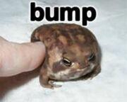 Frog bump
