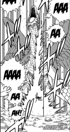 Height of dragon