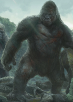 Kong's Father