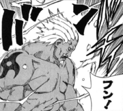Jutsu-Lightning-Release-Armor
