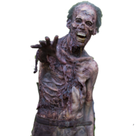 Zombie (The Walking Dead)