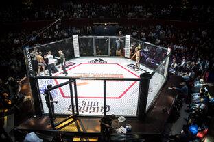 Kung fu master vs MMA fighter | VS Battles Wiki | FANDOM powered by