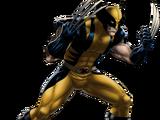 Wolverine (Marvel Comics)
