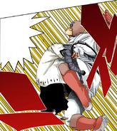 Star Eagle Kick