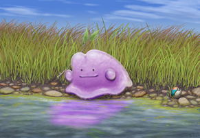 Ditto by racieb-1-