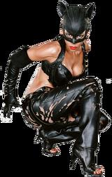 Catwoman (2004 Movie)