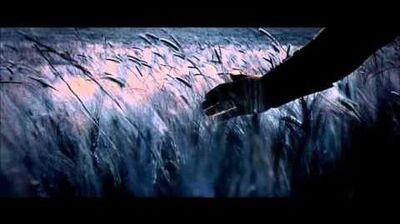 Hans Zimmer & Lisa Gerrard - Now We Are Free (Gladiator Soundtrack)