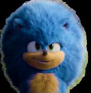 Fluffy Sonic