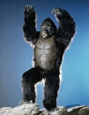 King Kong 1986 Still