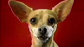 Taco Bell Chihuahua Commercials