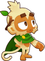Druid Monkey